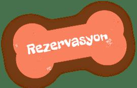 https://www.antalyapetotel.com/wp-content/uploads/2021/05/antalya-pet-otel-iletisim-rezervasyon.png